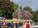 Rudern: 76. Regatta Heidelberg